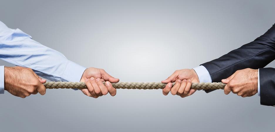 Cadeia produtiva organizada aumenta competitividade